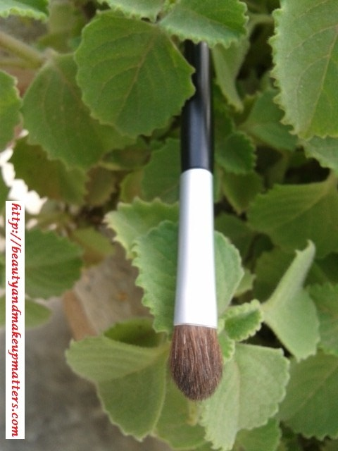 Faces-Canada-Eye-shadow-Brush-Review