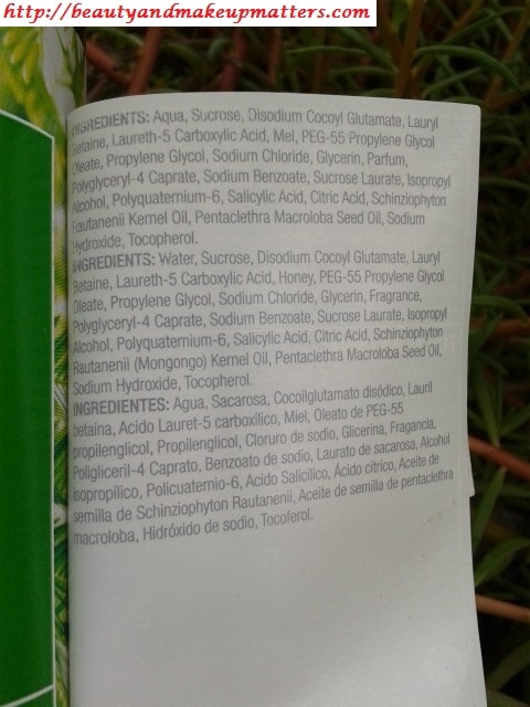 The-Body-Shop-RainForest-Moisture-Shampoo-For-Dry-Hair-Ingredients