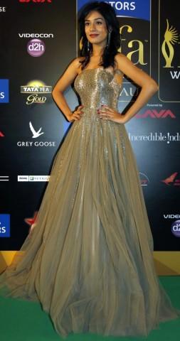 Amrita Rao @ IIFA Awards 2013