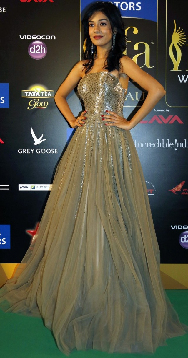 Amrita Rao @ IIFA Awards 2013