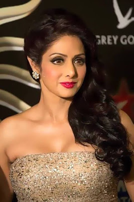 Sridevi @ IIFA Awards 2013 - Nude Gown