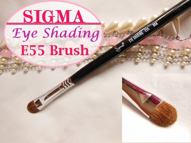 SIGMA E 55 Eye Shading Brush