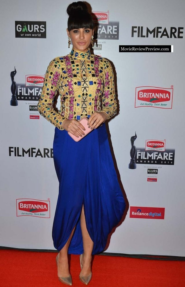 Worst Dressed at Filmfare Awards 2015 - Nargis Fakhri
