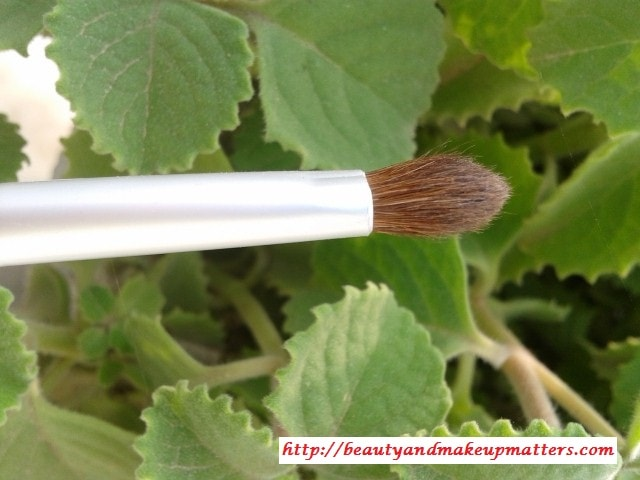 Faces-Eye-shadow-Brush-Review