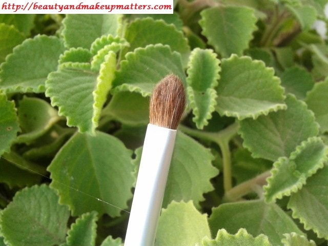 Faces-Eyeshadow-Brush-Review