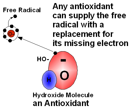 How Antioxidant protects skin from Free Radicals