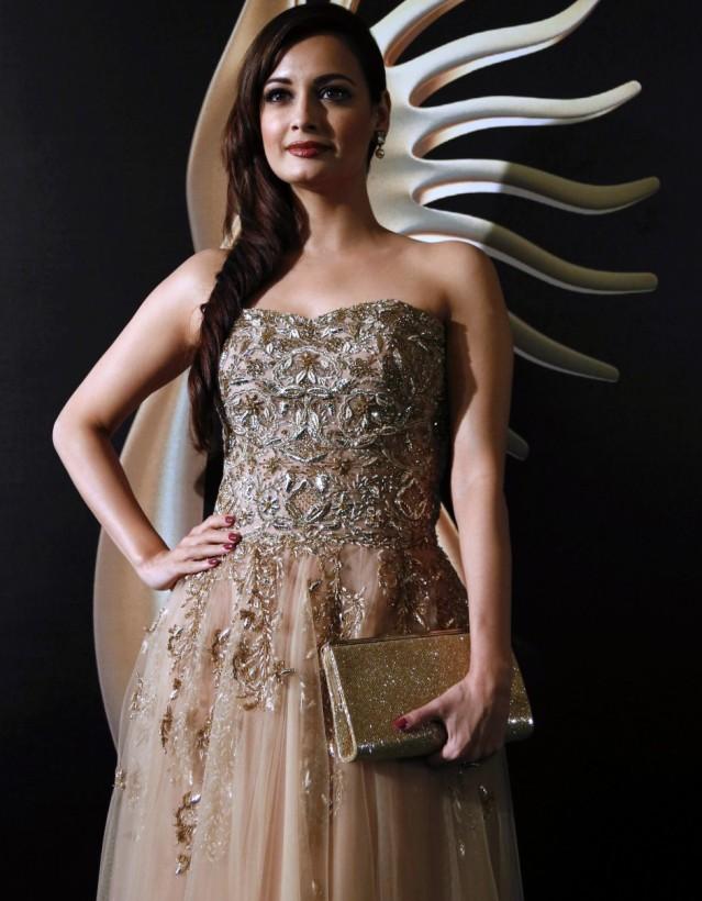 Dia Mirza @ IIFA Awards 2013