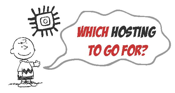 Which web Hosting to choose