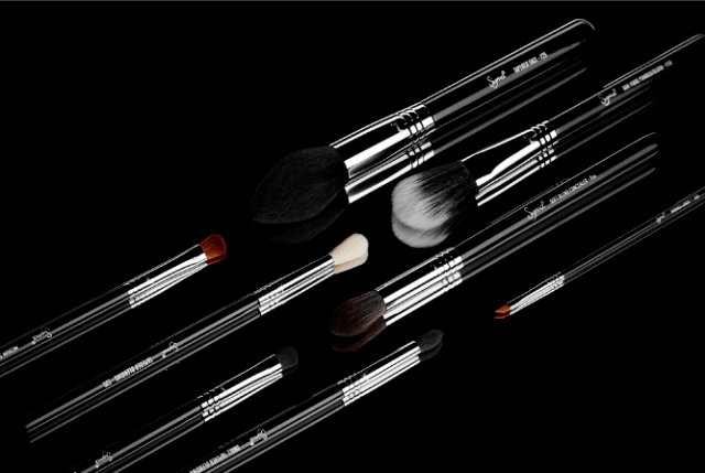 SigmaTech Makeup Brushes