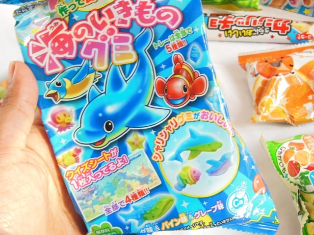 Japan Candy Box March 2016 DIY Gummies Kit